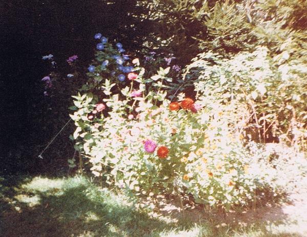 miltons-flower-gardening-oct-1988